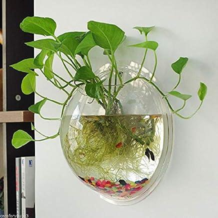 Electrodose Transparent Wall Mounted Hanging Acrylic Pot Plant Aquarium Fish Bowl (Clear, 10 x 10 cm)