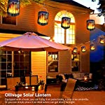 Ollivage Outdoor Solar Lanterns Dancing Flame Outdoor Hanging Lanterns Lights Solar Powered and USB Charging Torch Light Waterproof Auto Sensor for Garden Patio Yard, 1 Pack Strung on a Line