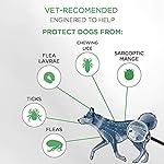 Virbac Preventic Tick Collier, grand chien, 63,5cm, 2-pack #1