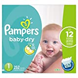Pampers Baby-Dry Disposable Diapers Size 1, 252 Count, ECONOMY PACK...