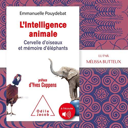 Couverture de L'intelligence animale