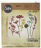 Sizzix Troquel, Wildflowers by Tim Holtz, Juego de troquelado, multicolor (7 unidades)