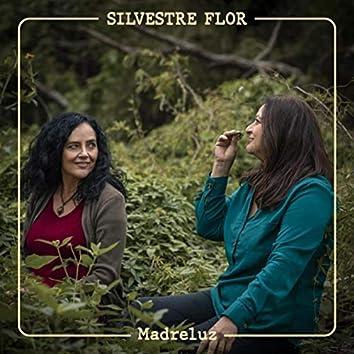Silvestre Flor