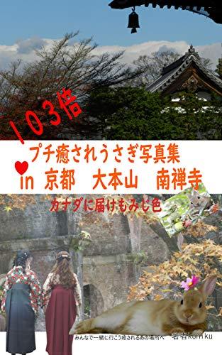 103倍プチ癒されうさぎ写真集 in 京都 臨済宗 大本山 南禅寺: カナダに届けもみじ色 うさごころ集