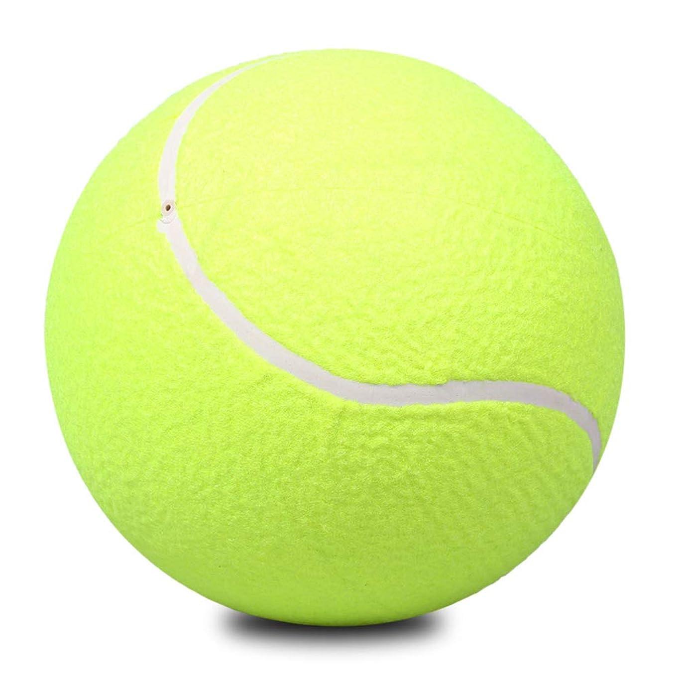 住人敗北コンデンサーYIGO 投げるおもちゃ 犬 ペットテニス ストレス解消 犬の訓練 運動不足 練習用 趣味テニス 9.5インチ