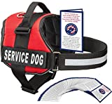 Service Dog Vest With Hook and Loop Straps and Handle - Harness is Available in 8 Sizes From XXXS to XXL - Service Dog Harness Features Reflective Patch and Comfortable Mesh Design (Red, XXL)