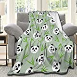 Gandharva Cute Panda Blanket,Flannel Soft Lightweight Travel Camping Throw ,for Bed Couch Sofa Office All-Season Blanket,120x90 Inch Large King