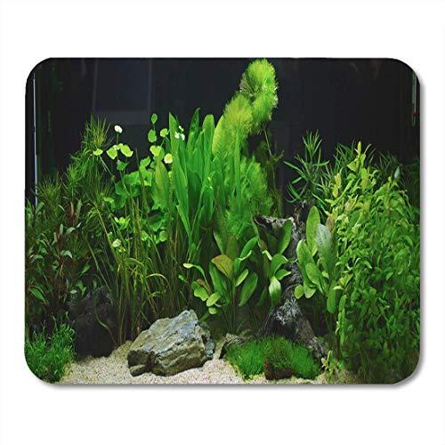 Mauspads Unterwasserfischpflanze Aquarium Aquascaping Tank Cichlid River Ada Mauspad für Notebooks, Desktop-Computer Matten Büromaterial