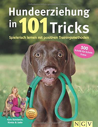 Hundeerziehung in 101 Tricks: Spielerisch lernen mit positiven Trainingsmethoden