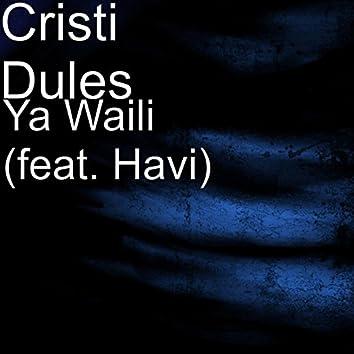 Ya Waili (feat. Havi)