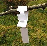 KINGLAKE 200 Étiquettes en Plastique Blanches pour Plantes et Arbres pour accrocher 2 x 20 cm avec Grande Surface d'écriture Blanc