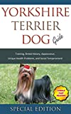 Yorkshire Terrier Training Guide: Training, Breed History, Appearance, Unique Health Problems, and Social Temperament