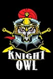 Journal: Knight Owl Night Owls Insomniac Medieval Knights TBlack Lined Notebook Writing Diary - 120 Pages 6 x 9