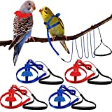Shappy 4 Pieces Pet Parrot Bird Harness Leash Adjustable Bird Flying Harness Traction Rope with Cute Wing for Parrots Pigeons Budgerigar Lovebird Cockatiel Mynah Outdoor Training Toy (Red, Blue,S)