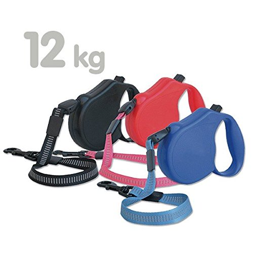 Arquivet 8435117887510 – Arqui Roller Classic3 Bleu
