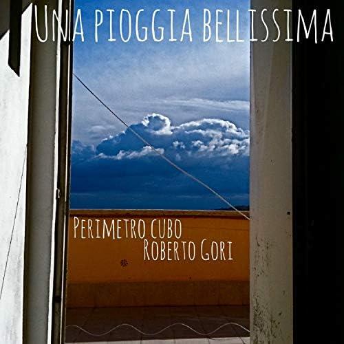 Perimetro Cubo & Roberto Gori