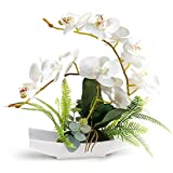YOBANSA Orchid Bonsai Artificial Flowers with Imitation Porcelain Flower Pots Phalaenopsis Fake Flowers Arrangements for Home Decoration (White 1)