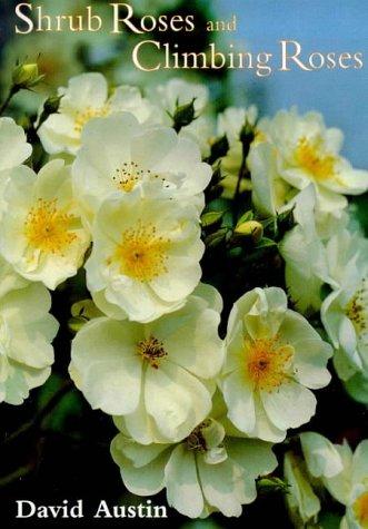 Shrub Roses and Climbing Roses: With Hybrid Tea and Floribunda Roses