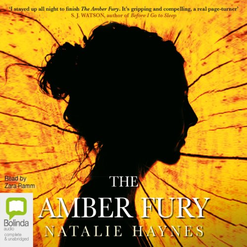 The Amber Fury cover art