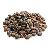 Ambra baltica ambra grezza pietre rotonde naturali, genuine, patatine, per artigianato, creazione di gioielli e perline resina. Lotto casuale (100 grammi)