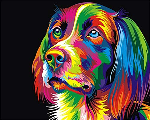 JRKJDF Paint by Numbers,Painting by Numbers Kit for Adults Kids Beginners Drawing Paintwork with Paintbrushes Paint by Numbers Home Wall Decoration Colorful dog SZHC2-010Frameless 16*20inch