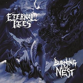 Burning the Nest