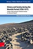 History and Society During the Mamluk Period (1250-1517): Studies of the Annemarie Schimmel Institute for Advanced Study III (Mamluk Studies)