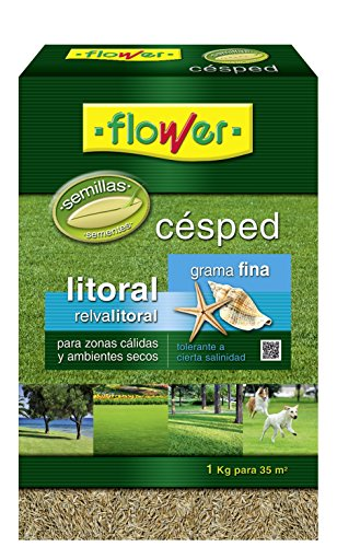 Flower 10786 10786-Semilla césped litoral grama Fina, 1 kg, No Aplica, 20.4x7.5x31 cm