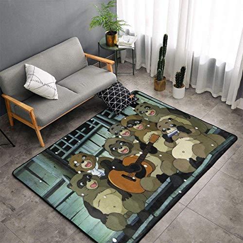 gaoyou Pom Poko Teppichbereich Schlafzimmer Camping Soft Mat Home Zimmer Komfortable und langlebige Dekor Teppich Polyester 60 X 39 Zoll