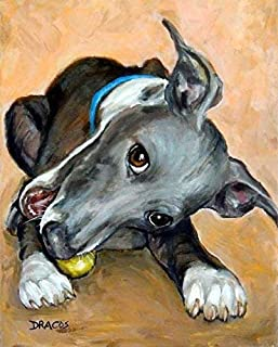 Best italian greyhound peach Reviews