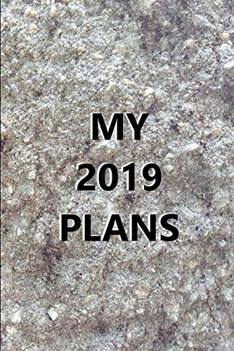 2019 Daily Planner My 2019 Plans Engraved Carved Stone Style 384 Pages: 2019 Planners Calendars Organizers Datebooks Appointment Books Agendas