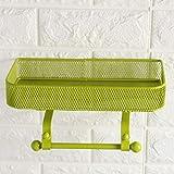 Supporto Di Carta Igienica Con Magazzinaggio Carta Assorbente Supporto Del Tovagliolo Di Metallo Con Montaggio A Parete (Color : Green)