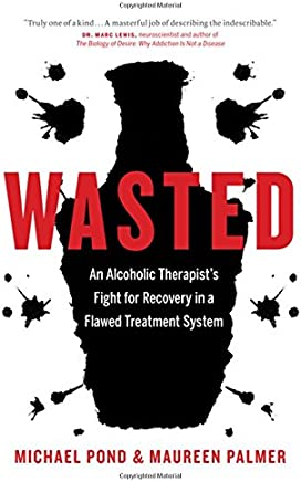 Wasted: An Alcoholic Therapist's Fight for Recovery in a Flawed Treatment System