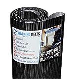 WALKINGBELTS Walking Belts LLC - Horizon DT680 S/N: TM198 Treadmill Walking Belt 1ply + Free 1oz Lube