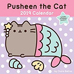 Pusheen the Cat 2019 calendar -- self care gift idea