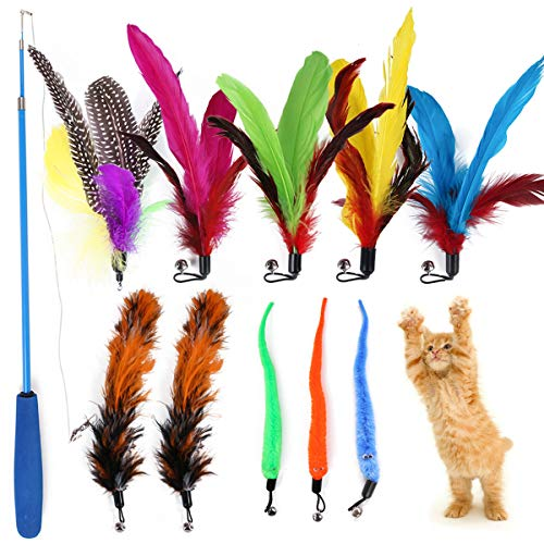 seninhi Cat Toy Retractable Interactive Cat Wand, 11 Packs Interactive Cat Feather Toys, 3 Kinds of cat Teaser, Cat Fishing Pole Toy for Indoor Kitty Old Cat Exercise
