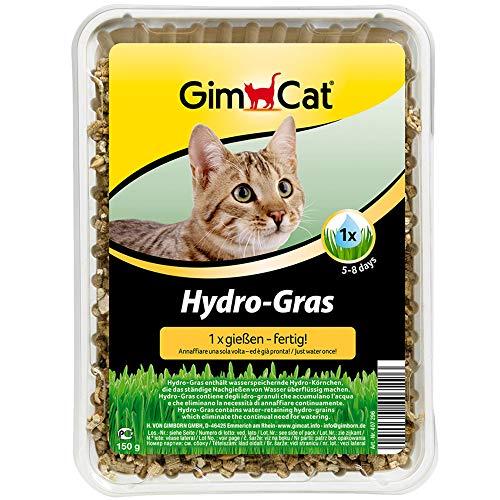 GimCat Hydro-Gras - Hierba fresca para gatos, de plantación controlada, en tan solo de 5 a 8 días - 1 bandeja (1 x 150 g) ⭐
