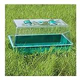WXJ Mini Invernadero de plástico para Plantas suculentas, Caja de Flores para el hogar, macetero para Plantas, 38x24x18cm, Que extiende la Temporada de Crecimiento