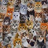 Dekostoff Trixie, Leinenoptik, Katzen, 100% Baumwolle, bunt