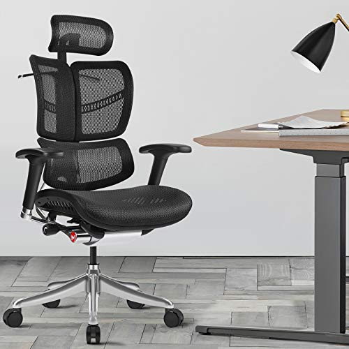GICLAIN Ergonomic Mesh High-Back Office Chair with Headrest, Black Mesh & Aluminum Alloy Frame