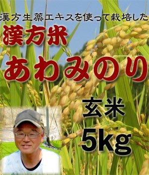 玄米 無農薬 あわみのり 四国徳島県産100% 漢方栽培米 完全無農薬米 玄米5kg (農家直送) (玄米5kg)