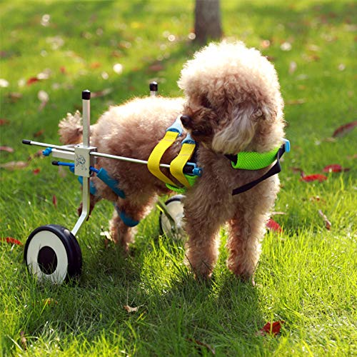 Two Wheels Adjustable Dog Wheelchair, cart, 7 Sizes for hind Legs Rehabilitation, 3D Soft Harness, Special Belly Band for Spine Protection and a Beautiful Leash are Free of Charge(1.New-XXS)