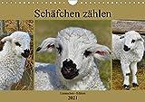 Schäfchen zählen - Lämmchen-Edition (Wandkalender 2021 DIN A4 quer)