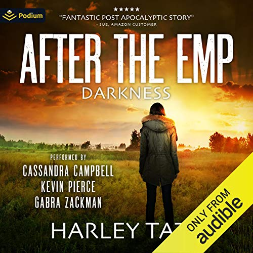 Darkness: After the EMP cover art