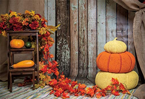 Yeeleyeele Happy Thanksgiving Backdrop 9x7ft Autumn Pumpkins And Hay Gifts Photography Backgrounds Fall Event Party Decor Countryside Kid Adult Portrait Photoshoot Studio Booth Props Dailymail