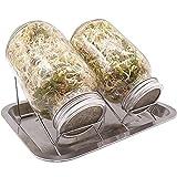Panngu 2er Sets 1000ml Sprossen Keimglas mit 1 Metall Wasserschale & 2 Ständer, Premium Sprossenglas Keimglas für Sprossen/Keimgerät für Sprossen/Sprossen Set 2 (Verbessert)