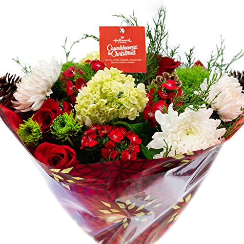 Hallmark Channel Countdown to Christmas Holiday Bouquet