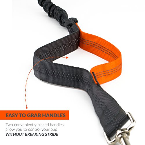Tuff Mutt Hands Free Dog Leash for Running, Walking, Hiking, Durable Dual-Handle Bungee Leash is 4 Feet Long with Reflective Stitching, and an Adjustable Waist Belt That Fits up to 42 Inch Waist
