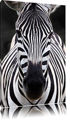 Pixxprint Zebra Porträt Format: 120x80 auf Leinwand, XXL riesige Bilder fertig gerahmt mit Keilrahmen, Kunstdruck auf Wandbild mit Rahmen, günstiger als Gemälde oder Ölbild, kein Poster oder Plakat