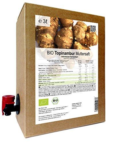 BIO Topinambur Muttersaft - 100 % Direktsaft milchsauer fermentiert 3 Liter